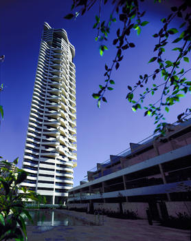 Horizon Apartments Darlinghurst Sydney The Tower Seen From Swimming Pool And Garden